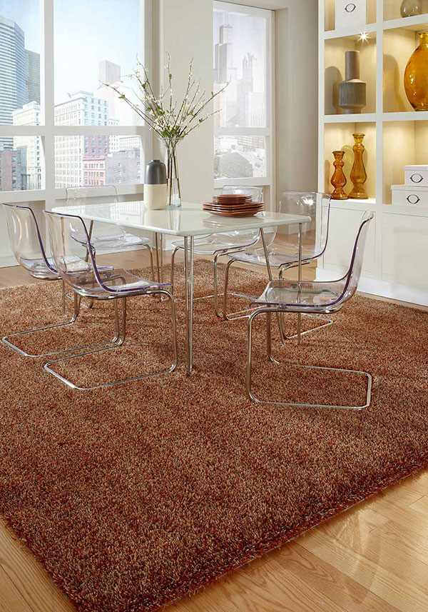 Dining room with shag rug for texture